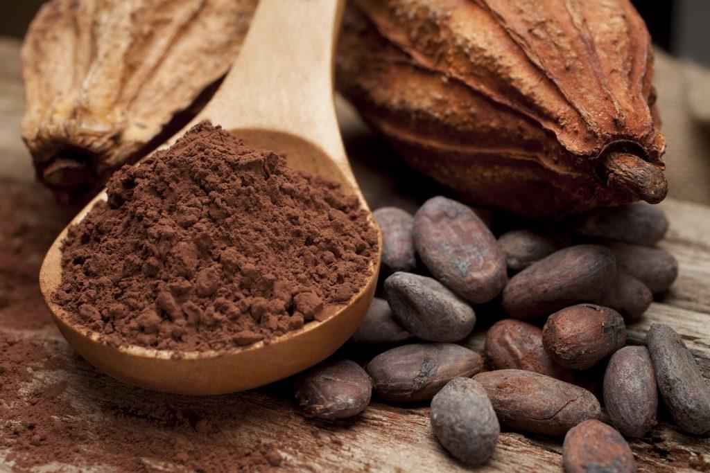mleko w proszku pełne, mleko w proszku odtłuszczone, serwatka w proszku, proszek kakaowy, kakao naturalne